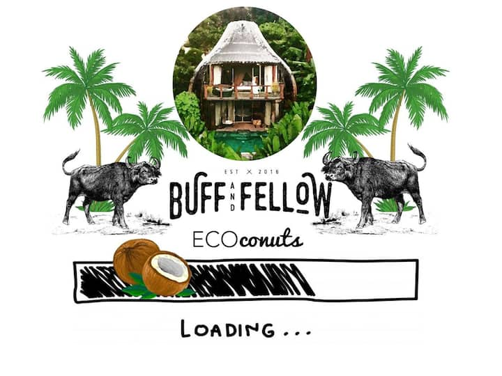 Buff and Fellow Eco Coconut 7 (6 sleeper)