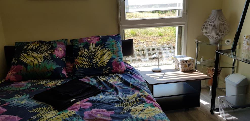 Chambre calme avec télévision et lit double.