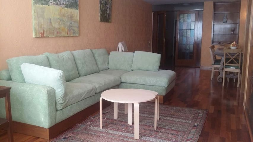 Quiet & centrical apartment, next to Plaza Molina!