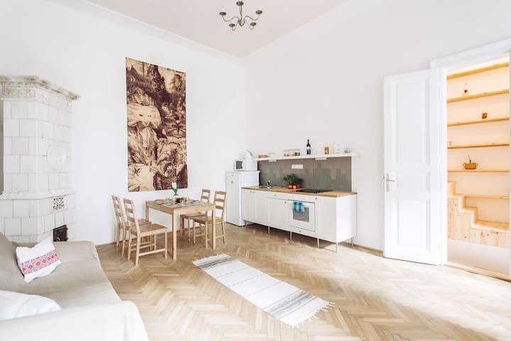 19th century & modern cozy flat