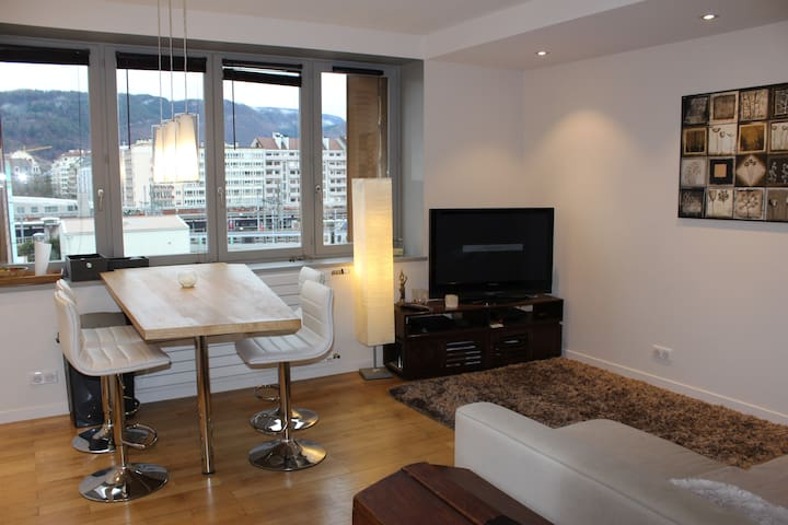 bel appartement centre - อานเนอซี - อพาร์ทเมนท์