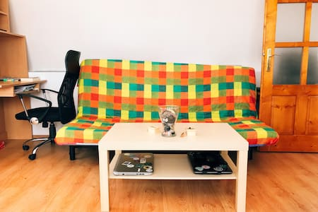 Spacious-sunny-cozy apartment