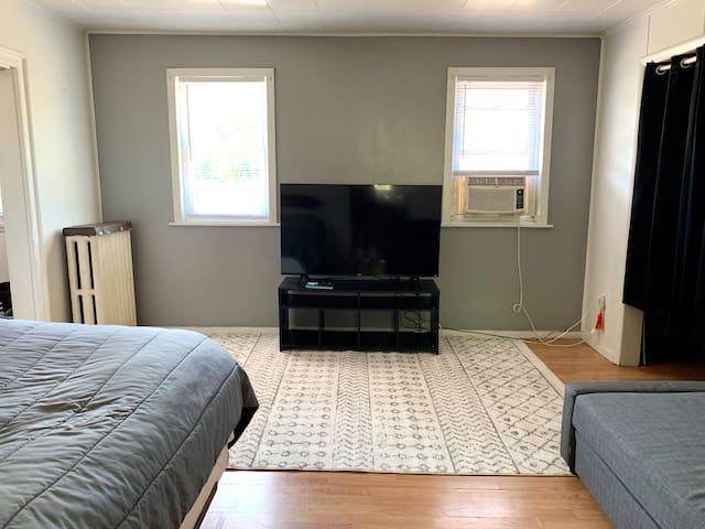 Newly Updated- Central Downtown Apartment