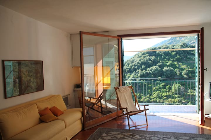 Amazing sea-view from balcony,  - Corniglia - Leilighet