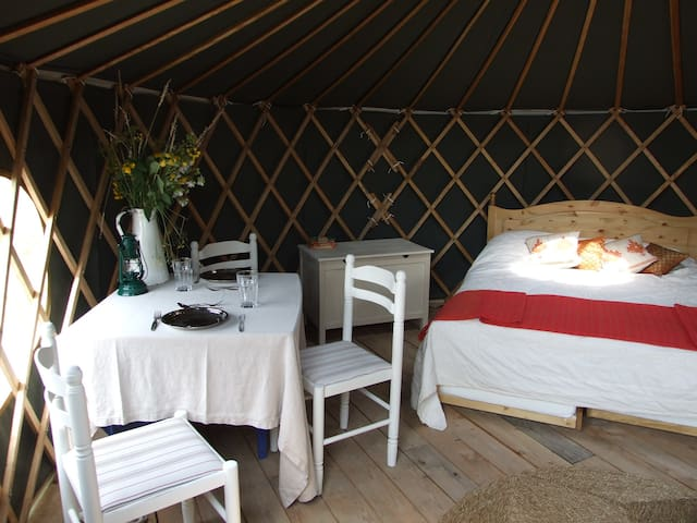 'Beech' Yurt in West Sussex - Fernhurst
