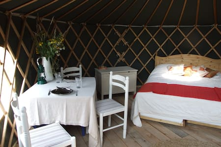 'Beech' Yurt in West Sussex - Fernhurst - Jurta