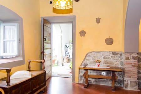 """Le Caselle"" farmhouse - Apartment"