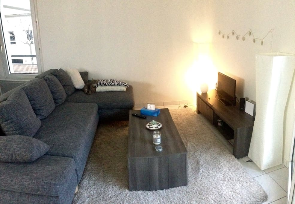 Canapé lit 2 places.