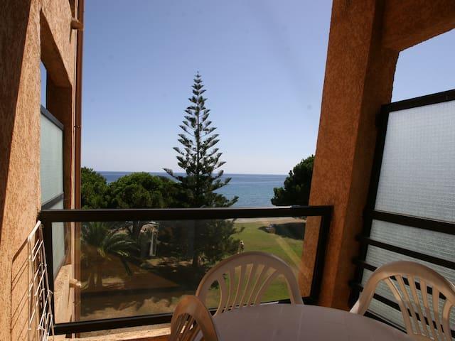 Sur la plage avec vue sur la mer , - San-Nicolao - Apartemen