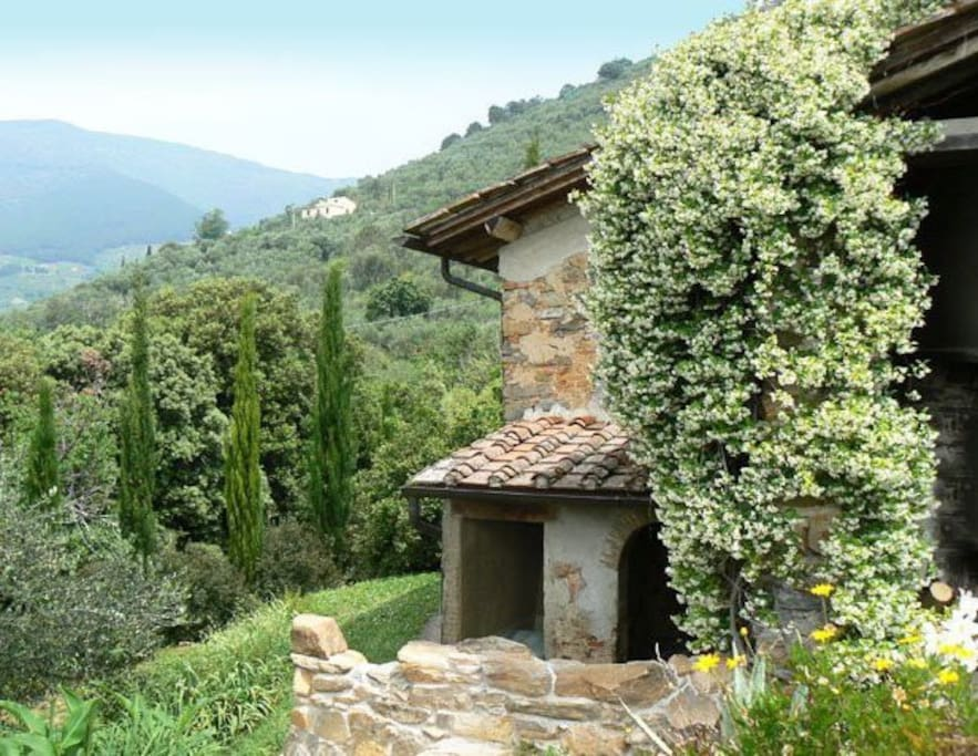 Monolocale con grande giardino houses for rent in calci for Rent a house in tuscany