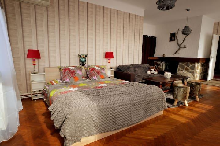 Vaste chambre de 55m² climatisée près de la Cité - Carcassonne