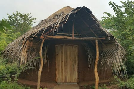 "The jungle paradise (Eco) -""Clay house/yurt"""