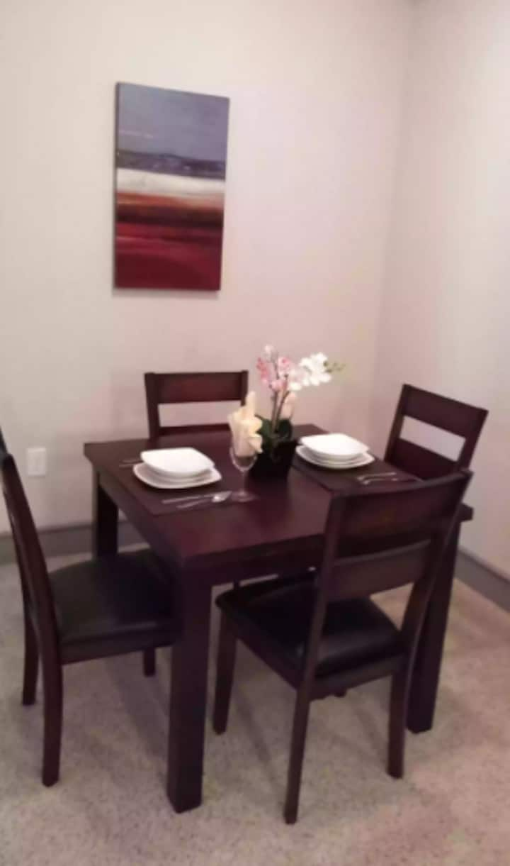 Katy 2 bedroom apartment with Free WIFI and TV