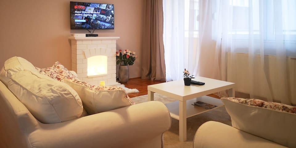 Elegant 2bedroom Downtown Suite