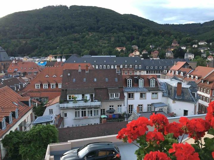 Hotel am Schloss- Apartment am Schloss, 6-8 Gäste