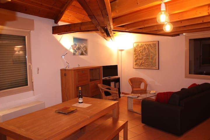 Briançon centre, 100m des pistes - Briançon - Apartamento
