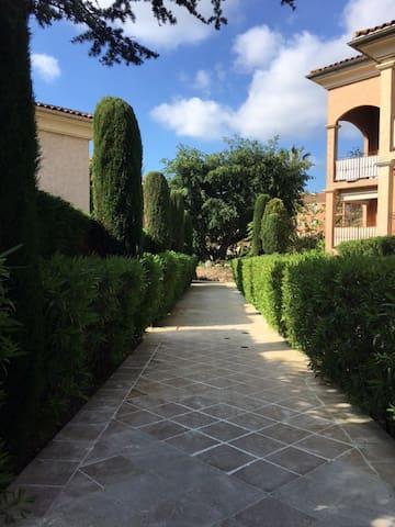 studio et jardin tropéziens