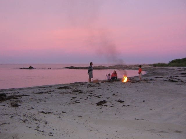 Bonfires on the beach? Sure. There's lots of wood around. Just do it below the tide line please.