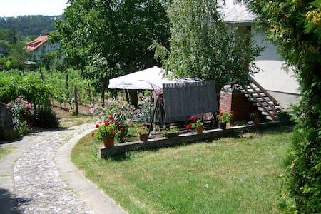 Családi nyaralás a Balatonnál - Balatongyörök - Hus