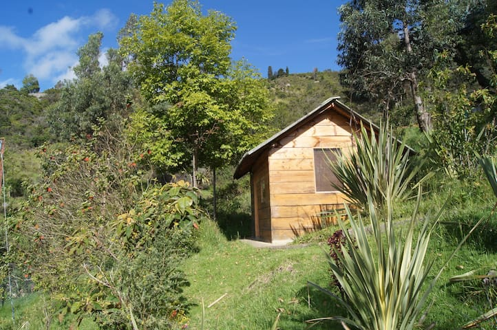 Forest of Orchids Cabin - Cundinamarca - Cottage