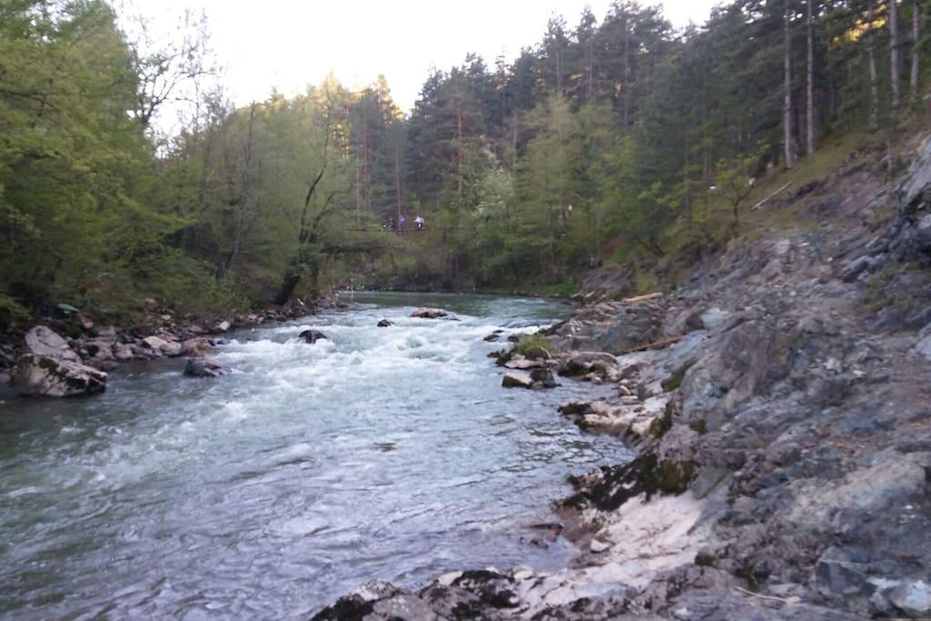 Krajolik, rijeka Krivaja i predio za setanje kao i ribolov. Udaljenos od objekta oko 400 m.