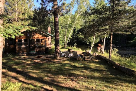 Grayling cabins 10ft frm theAusable - Grayling