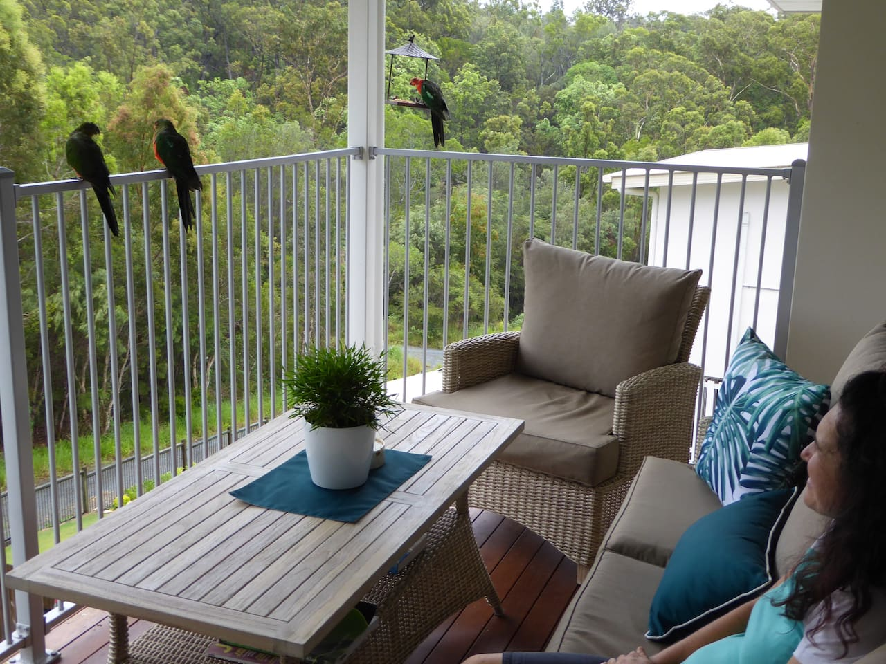 Be alert for close encounters of the many birds that pop in from the adjoining native forest.
