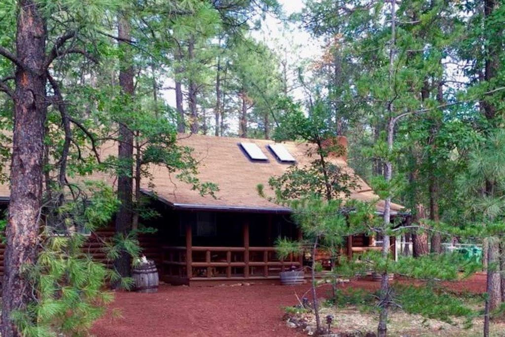 pinetop dating site Located less than 200 miles from phoenix, the pinetop area in western arizona's white mountains offers a refreshing break from the desert heat.