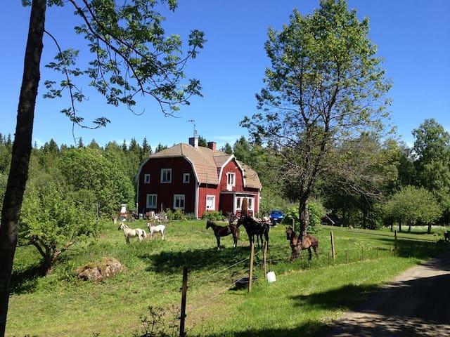Jönköping - Jönköping SO - Dům