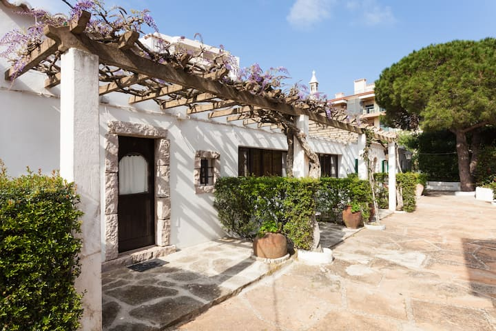 Portuguese Villa Lagos Q Ameijeira