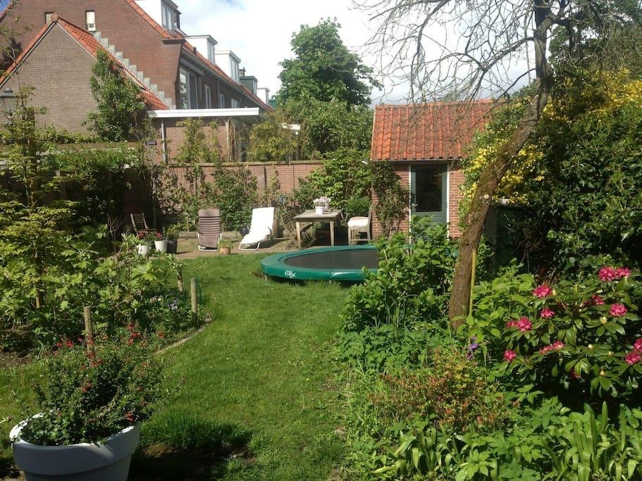 big garden with trampoline