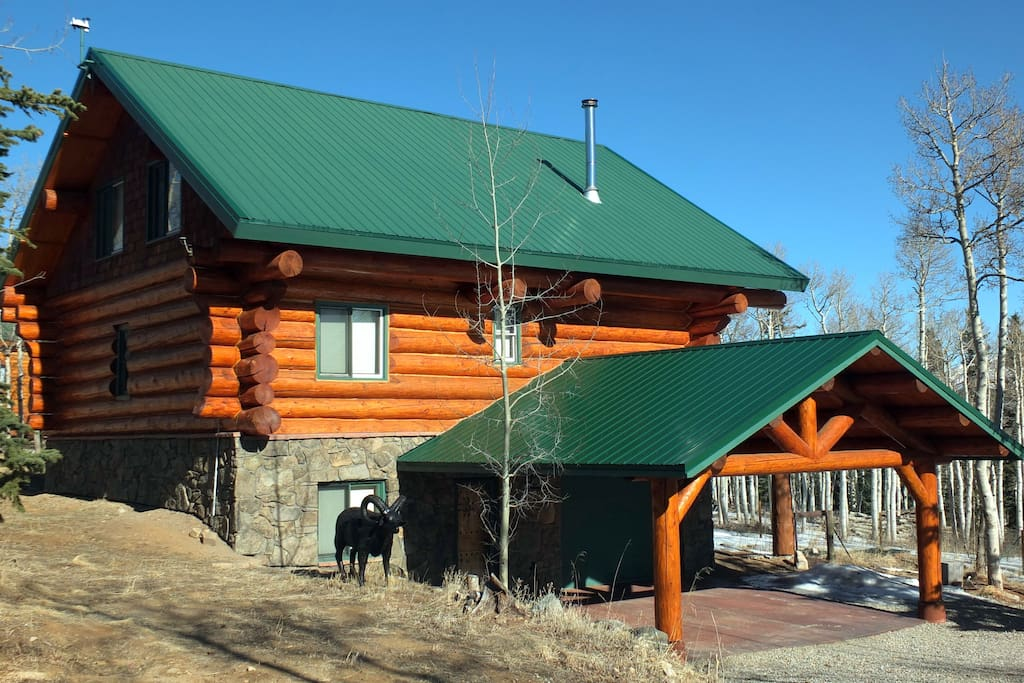 Massive log cabin in the mountains cabins for rent in for Cabine vicino a fairplay co