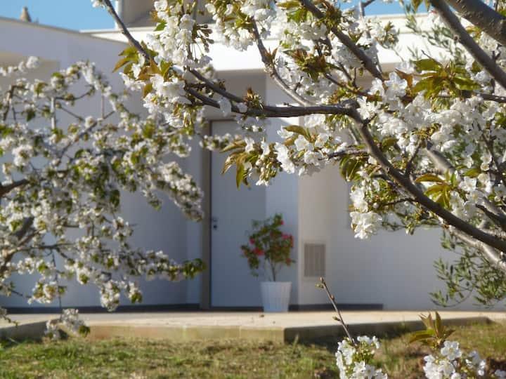 Il Giardino dei ciliegi Juniorsuite