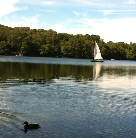 LAKE BEACH: FISH, SWIM, KAYAK!    - East Falmouth - Casa