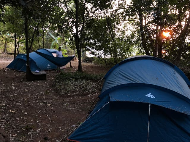 Camping with a Beautiful Sunset Under The Stars **