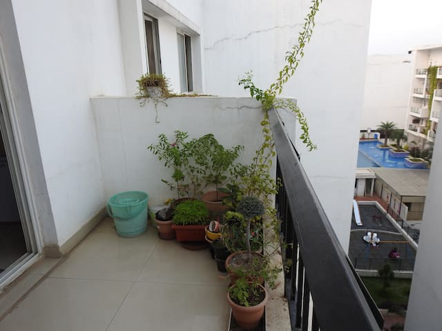 Balcony with few green plants to sit near and sip your evening drink