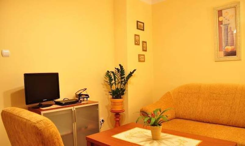 Great apartment for  2 - 4 people - Wagrowiec - Lägenhet