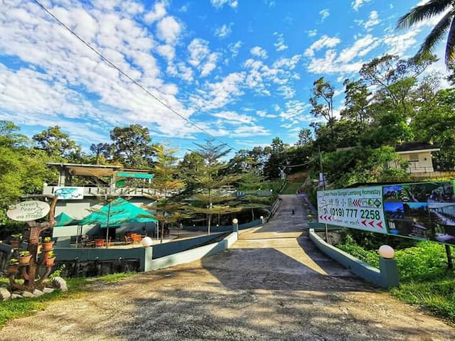 GREEN PEACE SUNGAI LEMBING 2 PAX