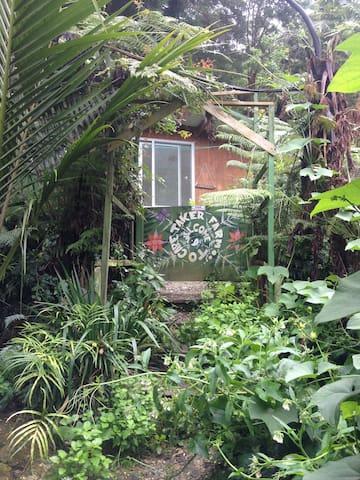 organic coastal eco-farm cabins - Whangateau - 통나무집