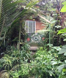 organic coastal eco-farm cabins - Whangateau - Srub
