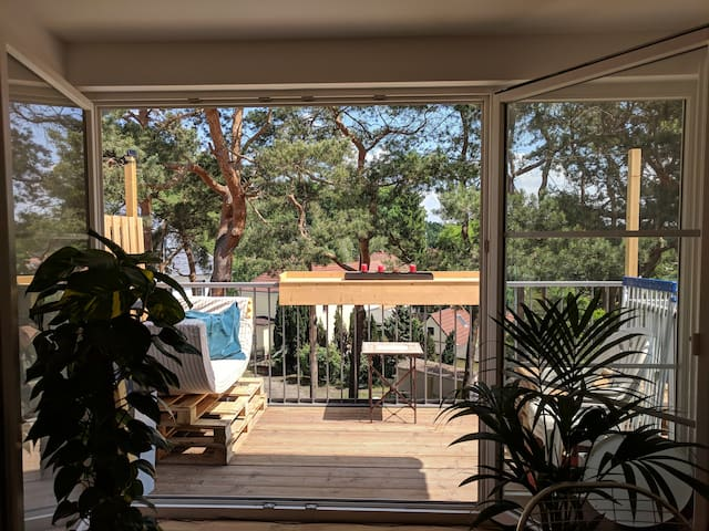Dachgeschosswohnung mit großem Balkon