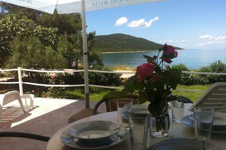Mansion by the sea-Sestrunj island - Sestrunj