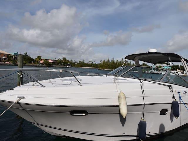 Bahamas: Sleep on a stunning Yacht on Private Dock