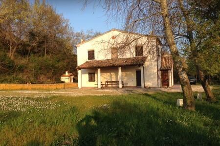 Olive House - Iesi