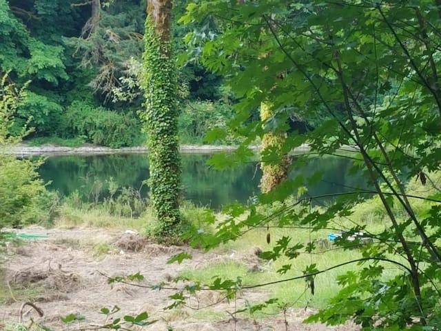Fantastic Lewis River Camping