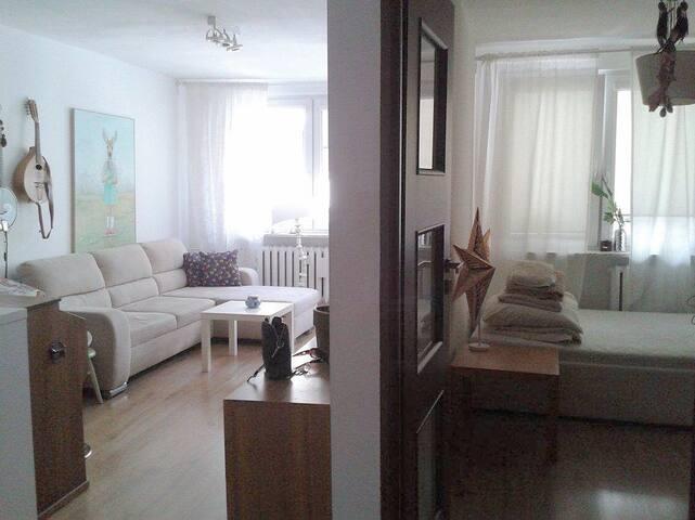 Salon i Sypialnia / Living Room & Bedroom