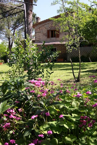 country home near Florence  - Montespertoli - House
