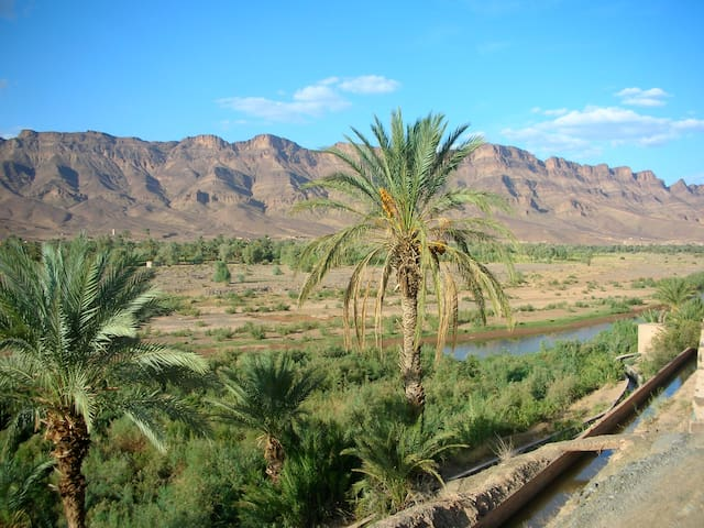 Discover the beauty of the desert  - Mhamid - Bed & Breakfast