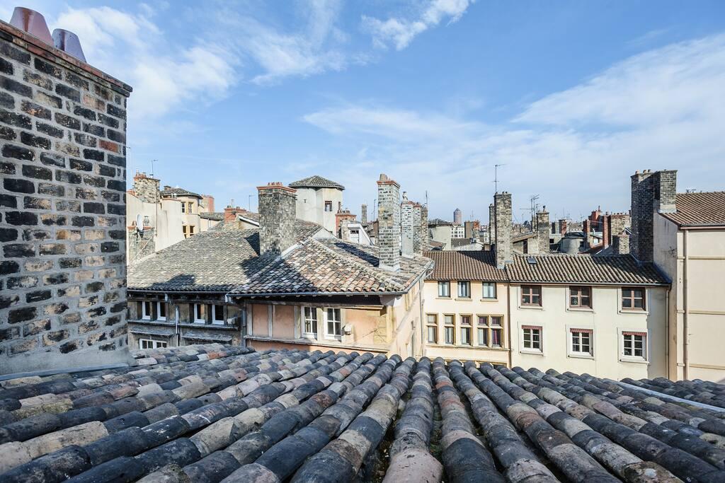 Les toits du vieux lyon appartement de charme - Appartement vieux lyon ...