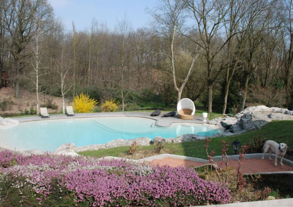 La raffa house the house in the woods pensione in for Piscina arcore